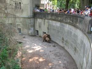 bern - medvedi-prikop