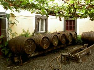 madeira víno